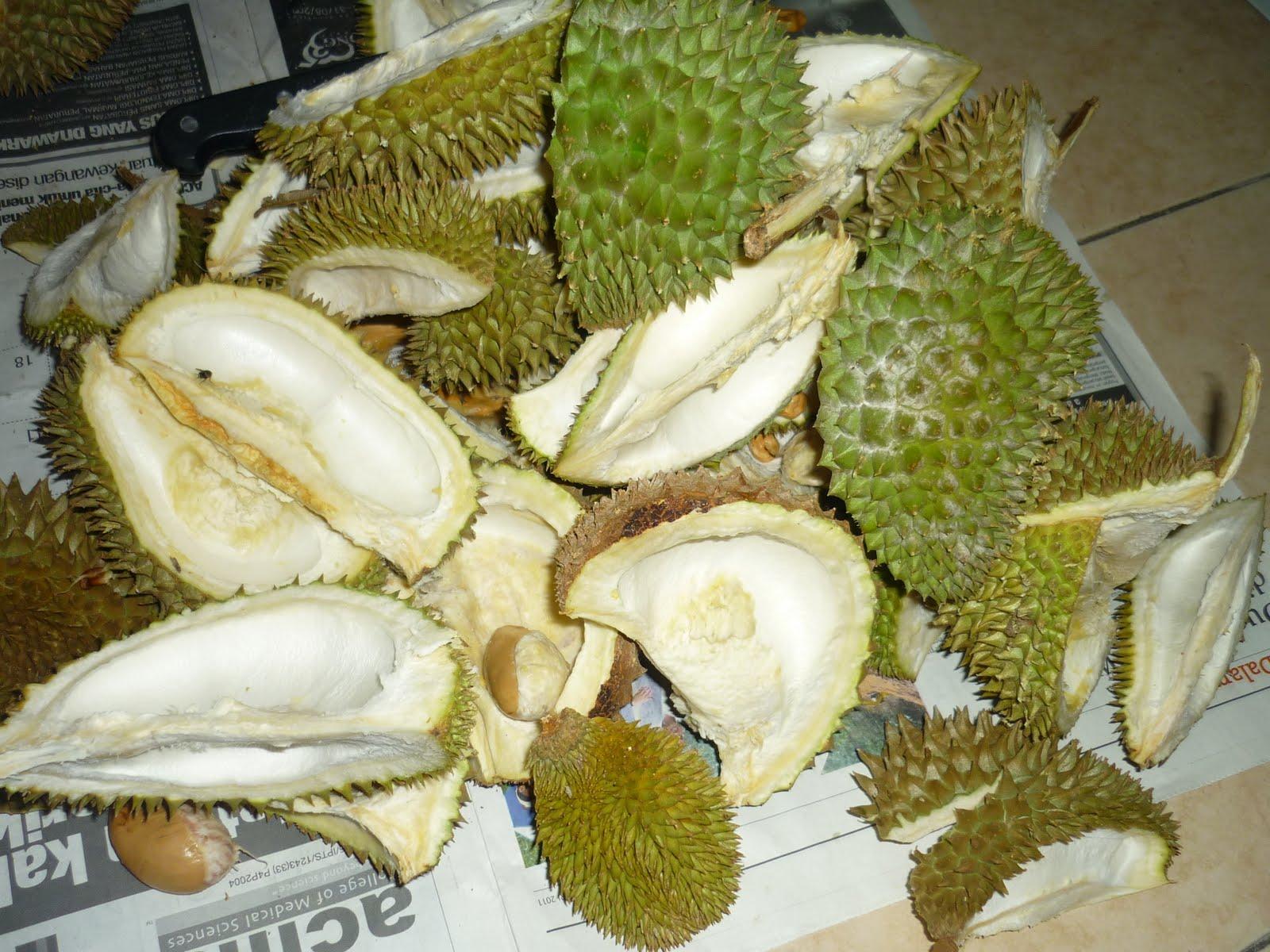 Menggunakan kulit durian
